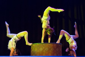 Performers of the Vau de Vire Society. Photo Credit: Marco Sanchez.